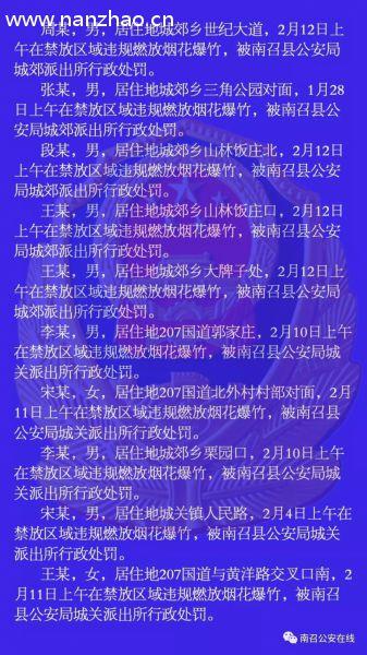 """违规燃放烟花爆竹,南召县10人被公安机关行政处罚"""""""